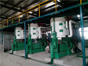 small scale oil refinery plant - palm oil mill machine leading