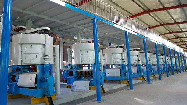 Sesame Oil Production Line